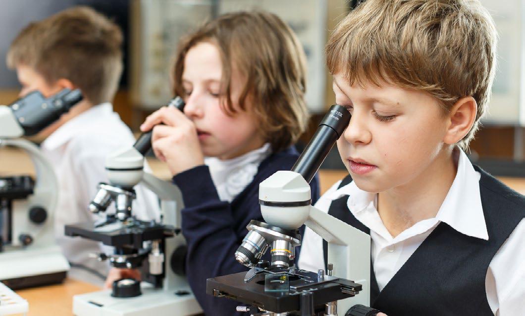 Проекты Школы новых технологий