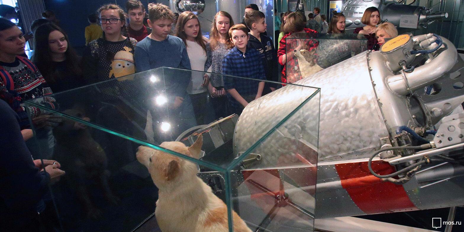 Проект «Музеи — детям»